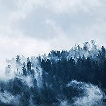 Warming Meadows