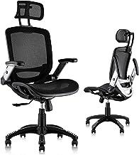 Gabrylly Ergonomic Mesh Office Chair, High Back Desk Chair - Adjustable Headrest with Flip-Up Arms, Tilt Function, Lumbar ...