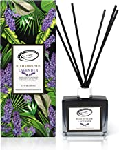 Lavender Scent Reed Diffuser Set with Sticks, Essential Incense Oil Air Freshener for Bathroom, Office, Gym, and Bedroom F...