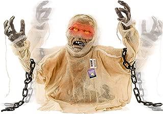 Best halloween mummy head Reviews