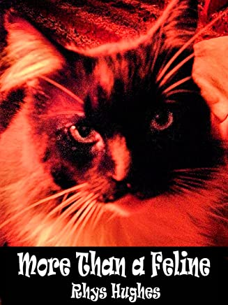 More Than a Feline (English Edition)