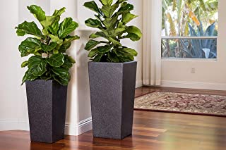 Best square root planters Reviews