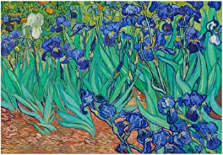 Funbox Puzzle Game, Beautiful Van Gogh Irises Interesting 1000 Pieces Jigsaw Puzzle for Adults