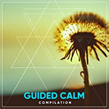 #17 Guided Calm Compilation for Stress Relieving Meditation