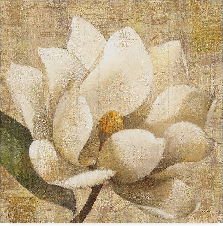 Trademark Fine Art Magnolia Blossom on Script by Albena Hristova, 14x14