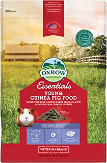 oxbow young guinea pig food