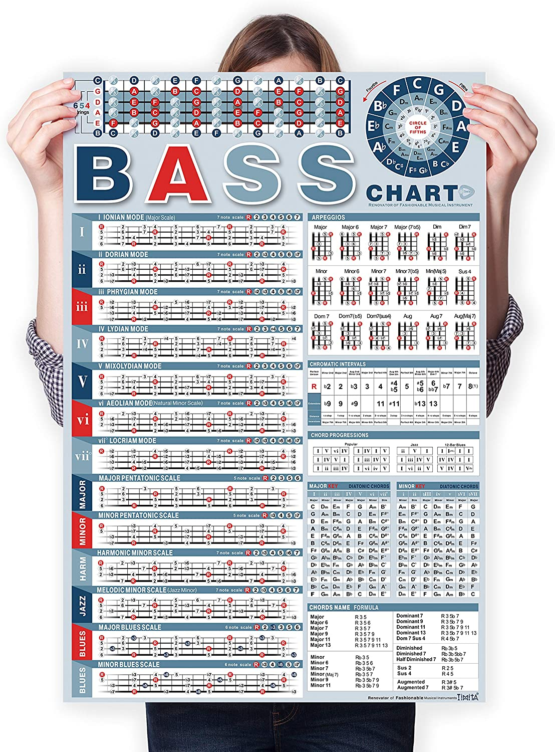 Bass Note Chart of Scale Reference Popularity for Chords Poster 5 popular Begi