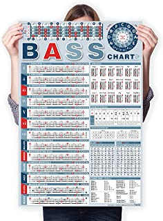 Bass Theory Chart of Scale Chords | Bass Reference Poster for Beginners and Teachers, A Perfect Bass Scale Poster of Acous...