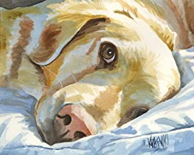 """Golden Retriever Art Print 