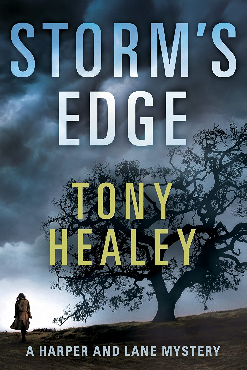 Storm's Edge (Harper and Lane Book 2)