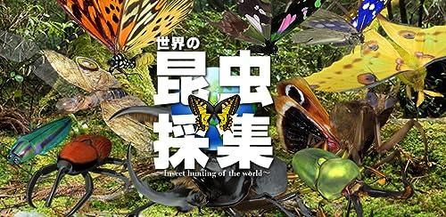 『世界の昆虫採集』のトップ画像