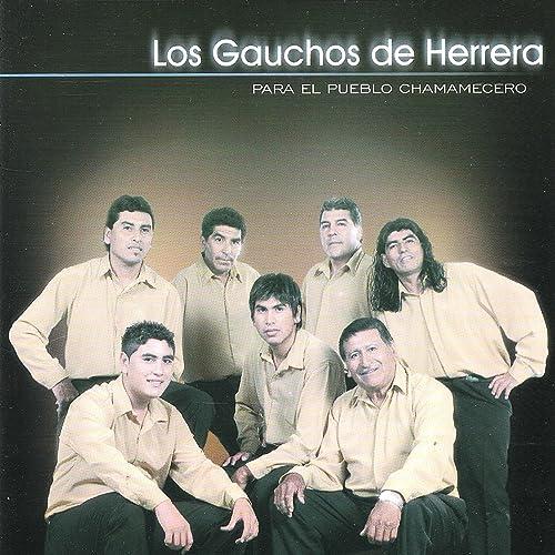 Tirando A Bruto By Los Gauchos De Herrera On Amazon Music