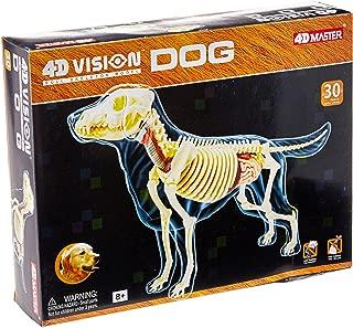 4D - Full Skeleton Dog Anatomy Model by FameMaster