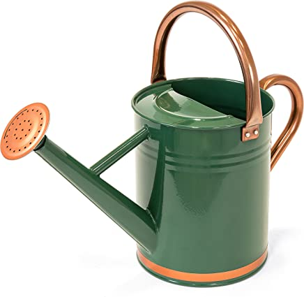 Best Choice Products 1-Gallon Lightweight Galvanized Steel Watering Can for Gardening w/ O-Ring, Top Handle, Copper Accents