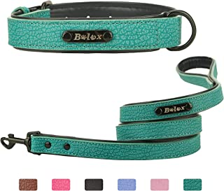 Soft Touch Dog Collar with Leash, Luxury Leather Pet Basic Collars for Small Medium Large Dogs