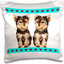 3dRose Tea cup yorkies friends - Pillow Case, 16 by 16-inch (pc_212052_1)