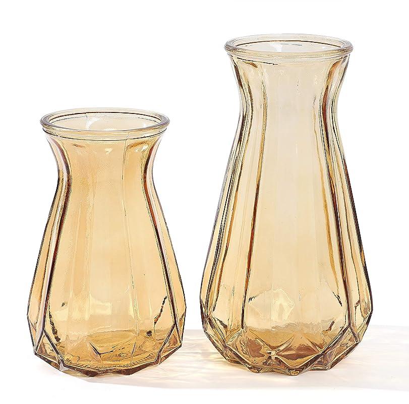 少しここに三角Life Palette 北欧 アンティーク アンティーク風 透明 クリア ガラス フラワーベース 硝子瓶 花瓶 2個セット (オレンジ)