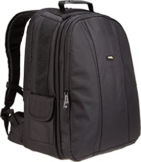 AmazonBasics DSLR and Laptop Backpack - Gray interior