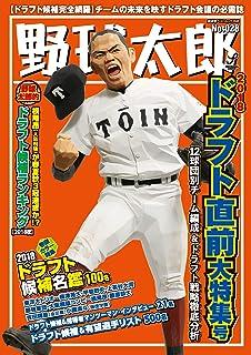 野球太郎No.028 2018ドラフト直前大特集号