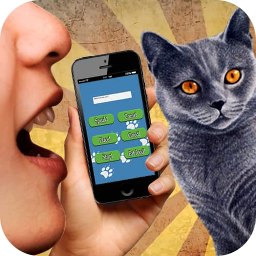 Cat Translator 3D sound