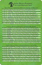 Tarot Quick Reference Sheet - Living Magick (Living Magick)