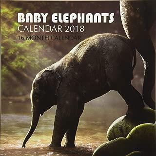 baby elephant calendar 2018