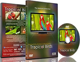 Relaxation DVD - Tropical Birds with Music or Nature Sound Calming Scenes of Pure Nature for Dogs and Cats and Happy People
