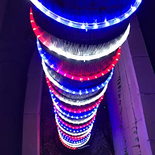 Russell Decor Patriot Independence Day LED 200'-30' Rope Lights Blue Red White (100)