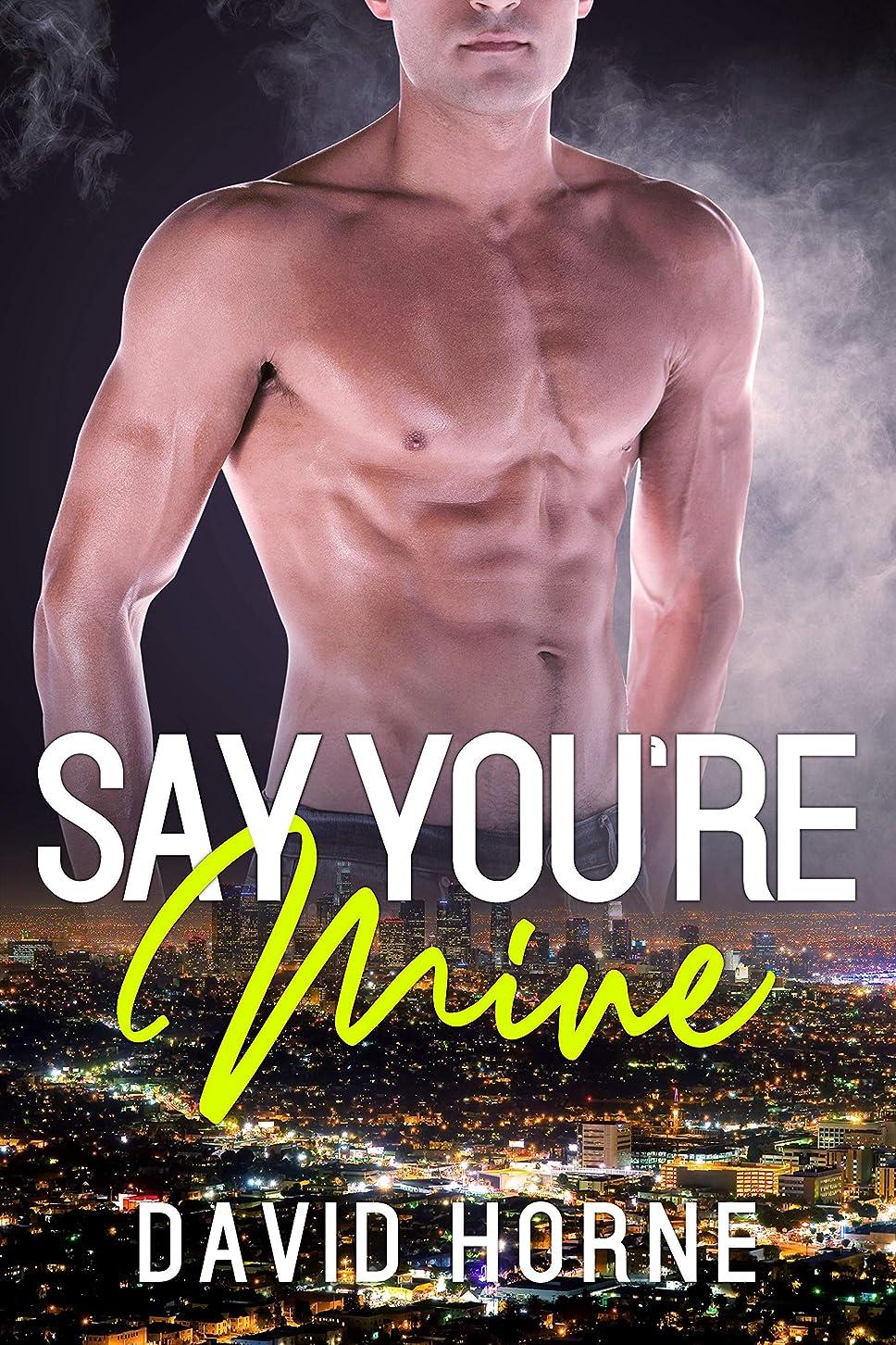 微妙離すメトロポリタンSay You're Mine (English Edition)