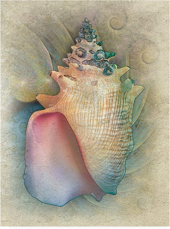 Trademark Fine Art Aquatica IV by Steve Hunziker, 14x19