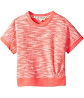 Appaman Kids - Jane Dolman Top (Toddler/Little Kids/Big Kids)