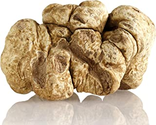 TRUFFLES USA Frozen White Truffles 4.7oz ONE PIECE - Imported from Italy - Specialty food Truffles - Vegetarian - Gluten Free