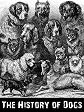 The History Of Dogs