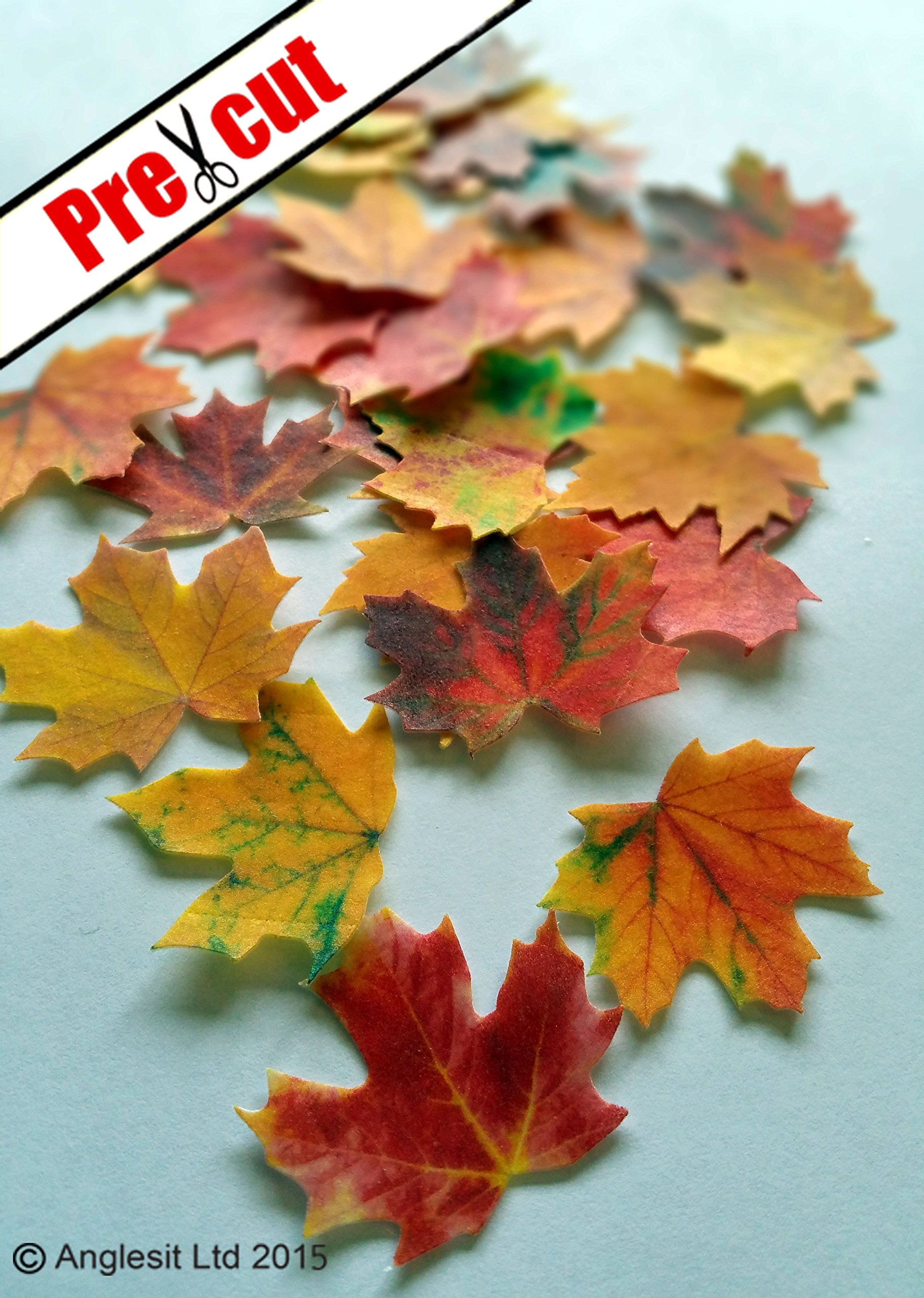 Superb Maple Leaves Autumn Fall Edible Rice Wafer Paper Cup Cake Funny Birthday Cards Online Unhofree Goldxyz