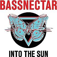 Into The Sun [2 LP]