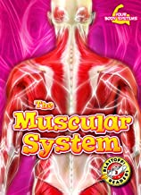 The Muscular System (Your Body Systems: Blastoff! Readers, Level 3)