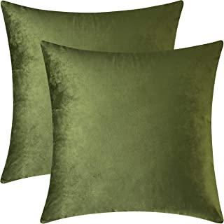 Mixhug Set of 2 Cozy Velvet Square Decorative Throw Pillow Covers for Couch and Bed, Moss Green, 18 x 18 Inches