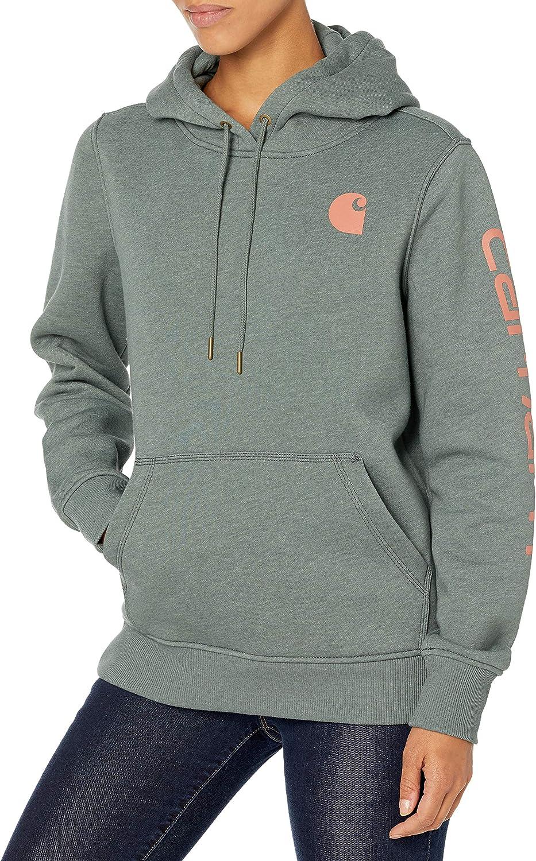 Regular and Plus Sizes Carhartt Womens Clarksburg Graphic Sleeve Pullover Sweatshirt Sweatshirt