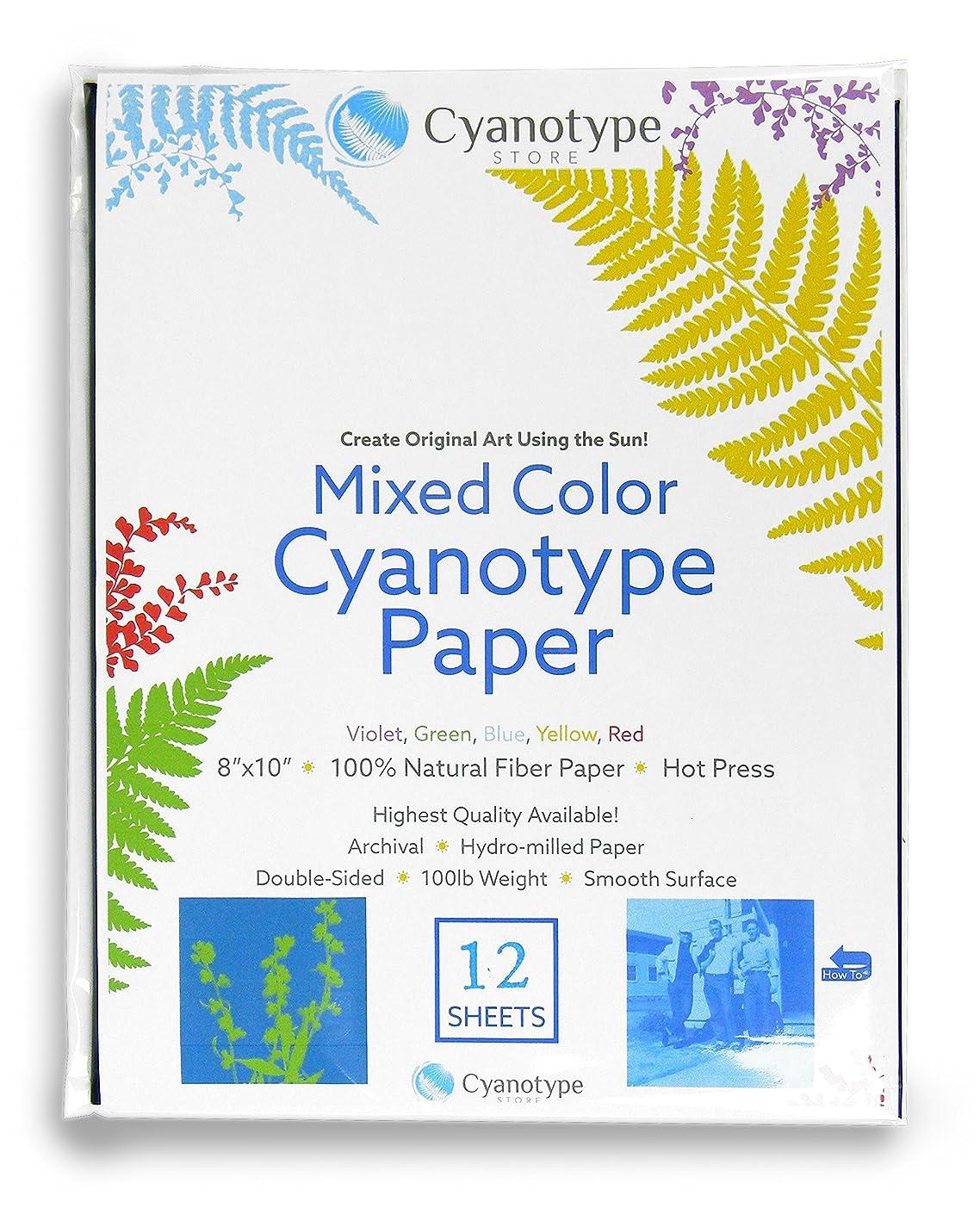 Cyanotype 8