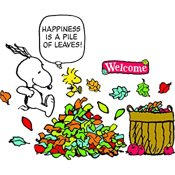 Amazon Com Eureka Snoopy Happiness Is A Pile Of Leaves Bulletin Board Classroom Decorations For Teachers 26pcs Themed Classroom Displays And Decoration Office Products