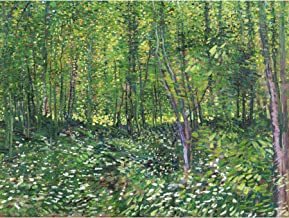 Vincent Van Gogh Trees and Undergrowth Large Wall Art Print Canvas Premium Poster Mural