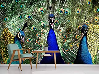 "AJ WALLPAPER 3D Blue Peacock Feather 084 Animal Wallpaper Print Decal Deco Indoor Wall Mural Self-Adhesive Wallpaper US Amy (Woven Paper (Need Glue) , 【 82""x58""】 208x146cm(WxH))"