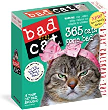 Bad Cat Page-A-Day Calendar 2021 PDF