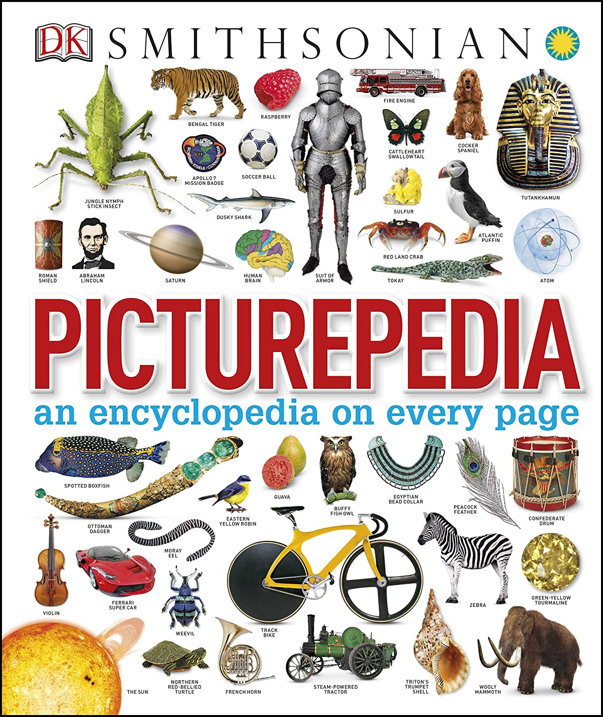 間欠目の前の令状Picturepedia: An Encyclopedia on Every Page (English Edition)