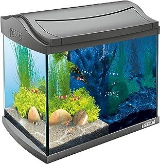 Tetra AquaArt Discovery Line LED, set completo per acquario da 20litri antracite (illuminazione a LED inclusa, circuito l...
