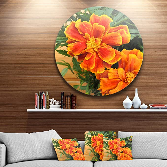 Amazon Com Designart Marigold Flower On Wooden Background Floral Circle Wall Art Disc Of 23 23 H X 23 W X 1 D 1p Green Home Kitchen