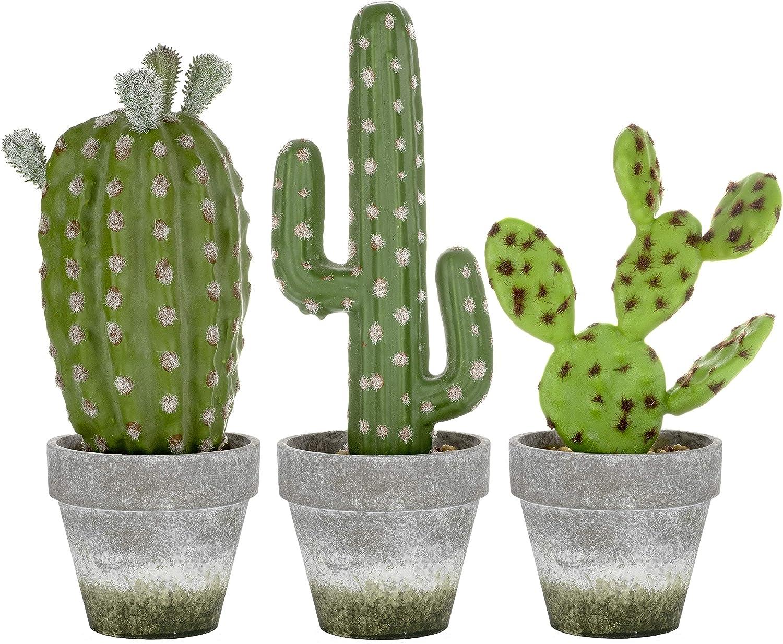 3 売買 Piece Large Artificial Succulent Cacti Pulp in Paper Po WEB限定 Plants