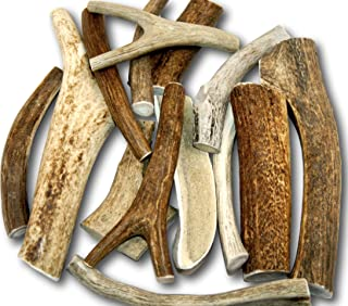 Top Dog Chews by The Pound Premium Large Antler (+/- an Ounce or Two) Variety Pack! No Pieces Under 6