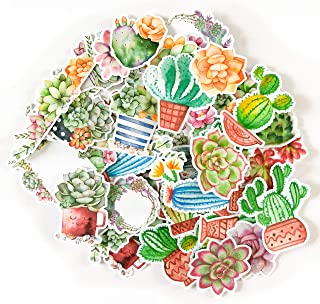 Navy Peony Colorful Succulent and Cactus Sticker Packs and Decals | Waterproof Stickers for Water Bottles, Laptops and Phone Cases | Cute Stickers for Your Notebooks, Planners and Bullet Journals