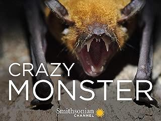 Crazy Monster - Season 1